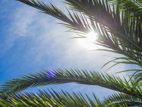 Severe Heatwave To Hit Queensland This Week